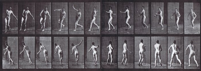 Cricket, Over Arm Bowling n°69, plate 290 – assorted plate from Animal locomotion: an  electro-photographic investigation of consecutive phases of animal movements by  Eadweard Muybridge, c1887